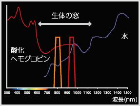 IRIで照射される赤外光